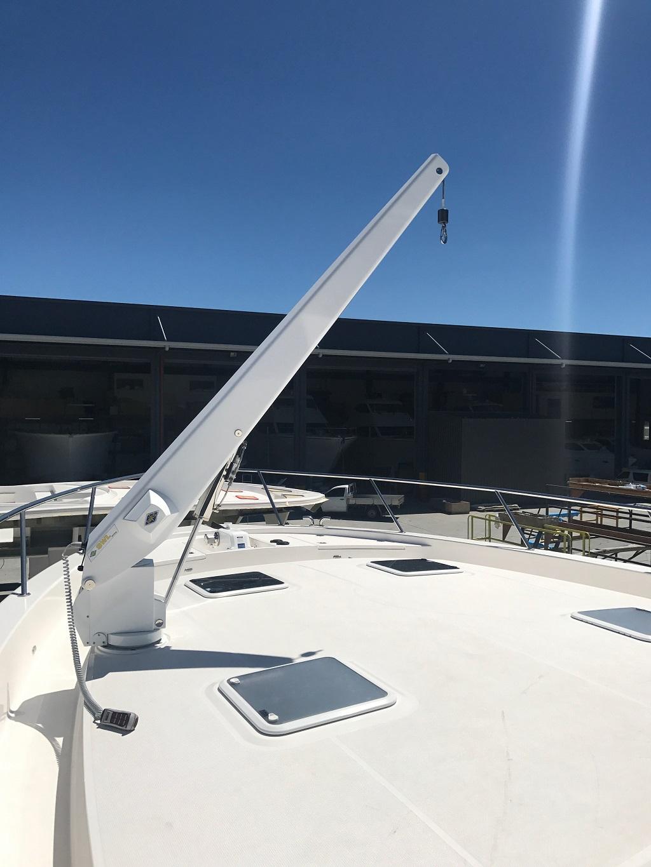 davco 500kg crane 4